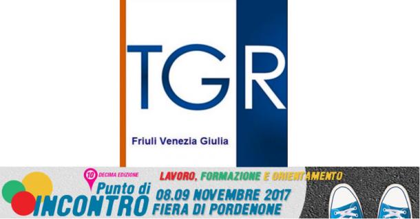 tgr-fvg-911